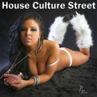 House Culture Street (2012) - скачать бесплатно