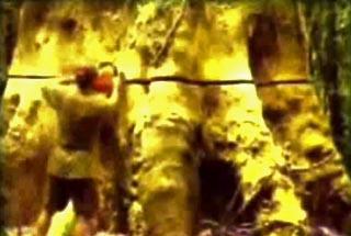 клип Madredeus - Anseio (Fuga Apressada)